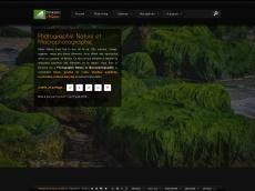 Photographie Nature et Macro